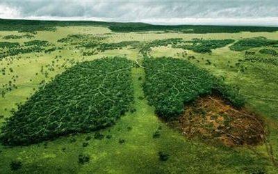 Jsme zodpovědní za to, jak žijí na druhém konci světa?!
